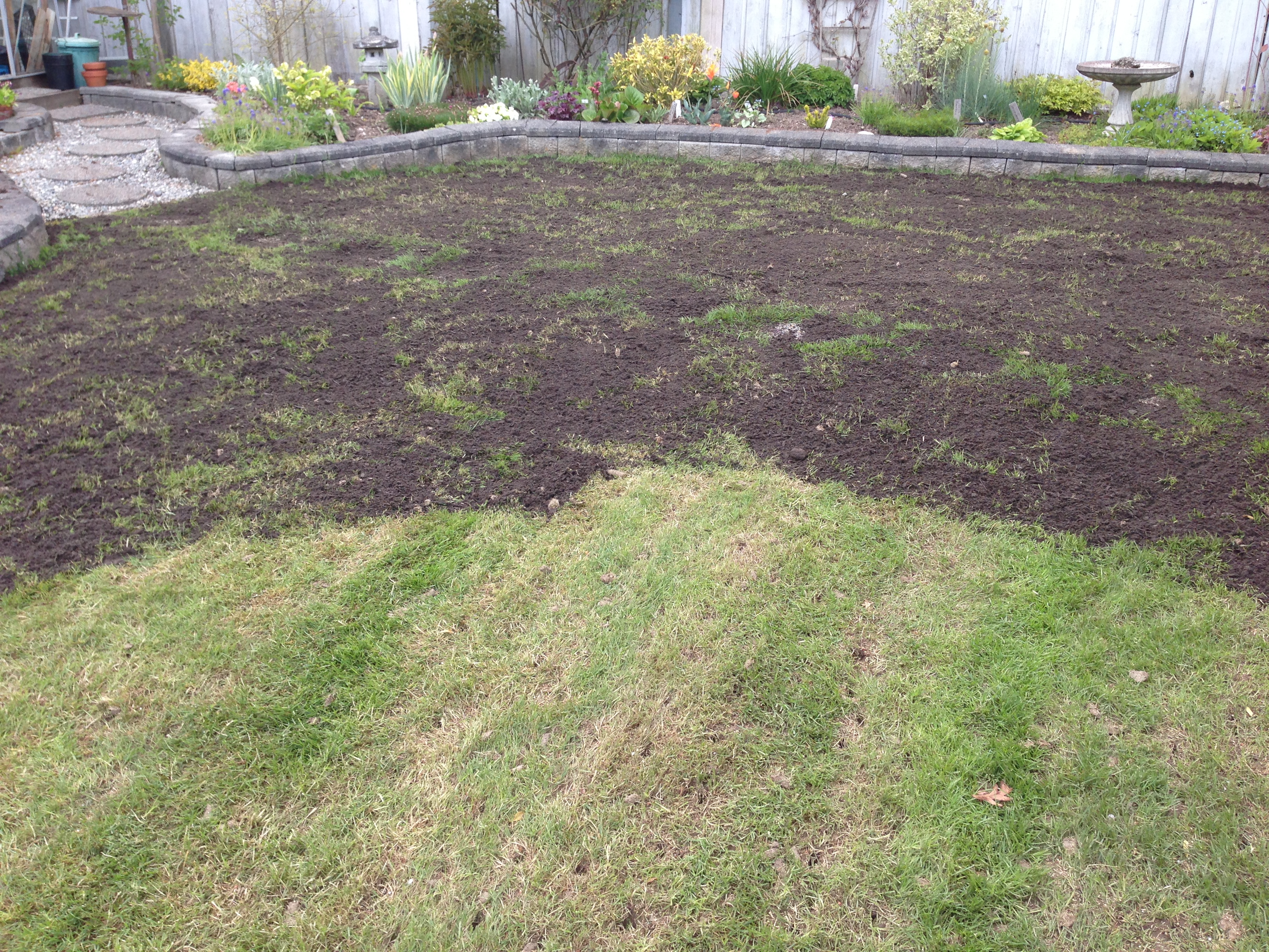 Buy top dressing for lawns